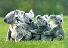 If you scratch my back :) So cute!