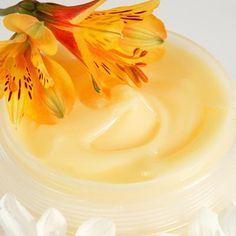 Mit diesem Rezept können Sie ganz einfach Propolis Salbe selber machen - Entdecken Sie zudem hilfreiche Anwendungstipps für Ihre Gesundheit ...