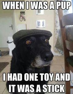 Quando eu era filhote, tinha 1 brinquedo e era um graveto.