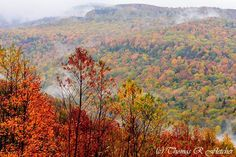 Resplendent West Virginia-Gauley River Valley near Webster/Pocahontas County Line by Thomas R Fletcher Photography