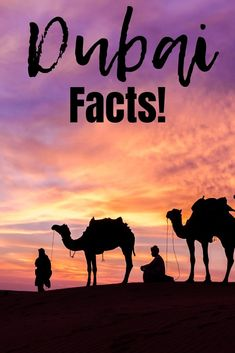 Check out these Dubai facts from historical content, rituals, and economic information for you to consider as you plan your Dubai adventure. Dubai Travel, Asia Travel, Eastern Travel, Wanderlust Travel, Cool Places To Visit, Places To Travel, Travel Destinations, Travel Guides, Travel Tips