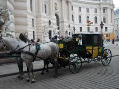 Vienna City Victoria #GrabYourDream #Adventure #Travel #Contest