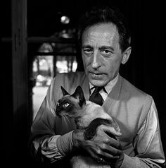 ジャン・コクトー Jean Cocteau avec son chat siamois photo Jane Bown 猫 cat แมว シャム猫 Siamese วิเชียรมาศ Crazy Cat Lady, Crazy Cats, Siamese Cats, Cats And Kittens, Big Cats, I Love Cats, Cool Cats, Celebrities With Cats, Men With Cats