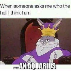 28 Epic Memes For Graphic Designers Aquarius Traits, Aquarius Quotes, Aquarius Horoscope, Aquarius Woman, Age Of Aquarius, Zodiac Signs Aquarius, My Zodiac Sign, Astrology Zodiac, Aquarius Lover