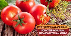 "Putin, domatese uygulanan ambargoyu neden kaldırmadı?  ""Putin, domatese uygulanan ambargoyu neden kaldırmadı?"" http://fmedya.com/putin-domatese-uygulanan-ambargoyu-neden-kaldirmadi-h22183.html"