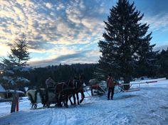 Poiana Brasov Snow, Mountains, Nature, Travel, Outdoor, Outdoors, Naturaleza, Viajes, Destinations