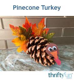 Making Pinecone Turkeys