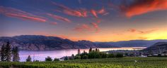 Lakeview at Beaumont Family Estate Winery in West Kelowna | Westside Wine Trail