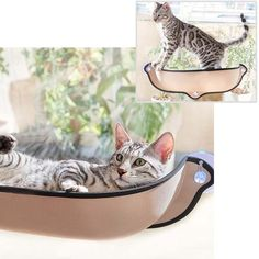 Pet Supplies Cat Supplies Nekoichi Cat Food Bowl With Legs Ceramic Cat-pattern Possessing Chinese Flavors