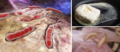 10 Toxic Foods That Should Never Cross Your Lips (Cancer Causing)