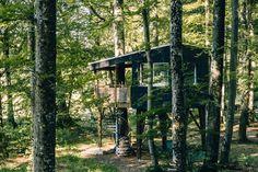 Jura & Drei-Seen-Land - 6 besondere Orte zum Natur genießen - Übernachten im Baumhaus (Les Cabanes du Mont) Seen, Trunks, Plants, Cabin, Mystical Forest, Canoe, Law School, Mountains, Landscape