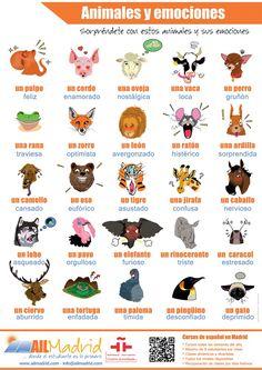 Animales y emociones poster