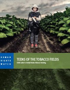 "NC tobacco farms is no place for teens. Government, Companies Fail to Provide Adequate Protection for tobacco farm employees from age 12 and up. ""Our bosses don't give us anything except for our checks. That's it."""