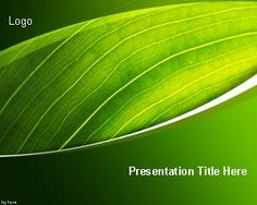 15 best templates images on pinterest powerpoint template free