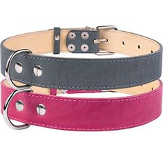 CollarDirect Flat Leather Dog Collar Pink Gray Puppy Smal... https://www.amazon.com/dp/B01FXG59NI/ref=cm_sw_r_pi_dp_x_waBRyb33KJZYF