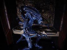 Aliens Series 2 - Xenomorph Warrior (Blue) - NECA Predator Alien, Xenomorph, Aliens, Lion Sculpture, Statue, Blue, Collection, Art, Art Background