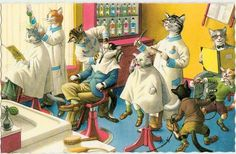 Vintage Mainzer Cats Postcard - The Barber Shop -- Artist Signed, Eugen Hartung (Unused) by VintagePlum on Etsy https://www.etsy.com/listing/232935659/vintage-mainzer-cats-postcard-the-barber