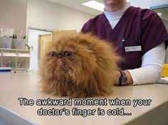 Doctor's fingers are cold.