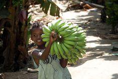 Tutti i benefici di uno dei frutti più venduti al mondo