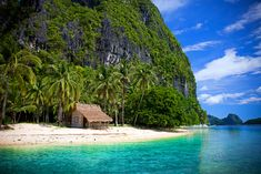 El Nido, Philippines. I always said I'd runaway to a little tiki hut in the middle of nowhere! Sounding pretty nice right now haha!