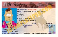 This is Wyoming (USA State) Drivers License PSD (Photoshop) Template. On this PSD Template you can put any Name, Address, License No. DOB etc and make your personalized Driver License.  You can also print this Wyoming (USA State) Drivers License from a professional plastic ID Card Printer and use as per your requirement.