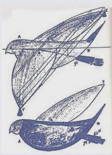 Το πρώτο μοντέλο αεροπλάνου που πέταξε στον ελληνικό ουρανό, στα 425 π.Χ. Simple Minds, Ancient Greece, Animals, Temples, Art, Animales, Art Background, Animaux, Kunst