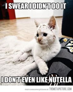 nutella can make a person do strange things....