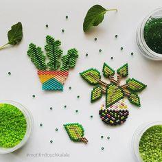 """167 mentions J'aime, 19 commentaires - Emilie Brumeau  (@milouchkalala) sur Instagram: """"Encore des plantes vertes !  Mais j'aime tellement ça !  Le piléa de @lulu_la_lucette m'a donné…"""""""