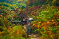 第三大川橋梁