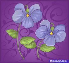 how to draw violets