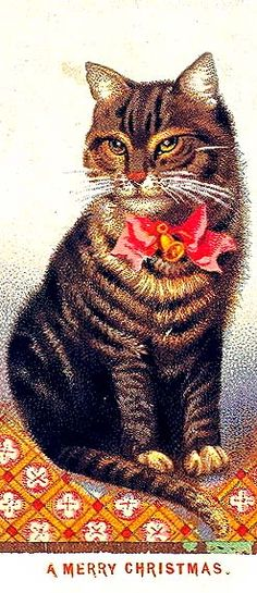 """""""A Merry Christmas"""" beautiful vintage Christmas Cat"""