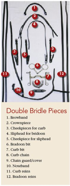 How to determine if you and your horse are ready for the double bridle // Dressage Today magazine