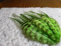 Lime Green Bright Striped Rooster Feathers by SolDoggie on Etsy, $5.50