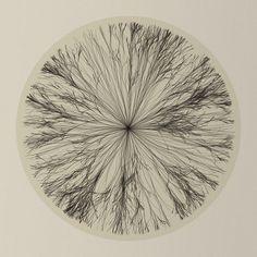 Diana Lange, Recursion Flower