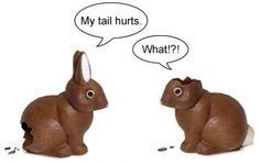 Easter Rabbit fun