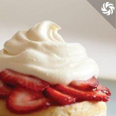Whipped Cream | Perfect Company