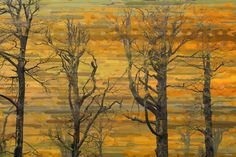 Burnt Trees Painting Prints on Wrapped Canvas