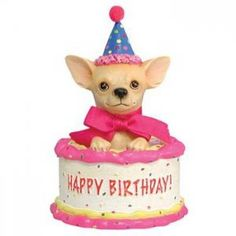 """Aye Chihuahua Birthday Cake Figurine, from Dogstuff.com. Surprise! Now scratch my tummy and make a birthday wish. This delightful addition to the Aye Chihuahua figurine collection is made from resin, accented with glitter, and measures approximately 4.5"""" high."""