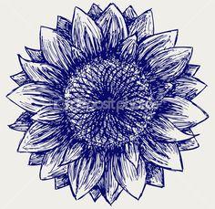 http://st.depositphotos.com/1034502/1266/i/450/depositphotos_12663985-Sunflower-sketch.jpg