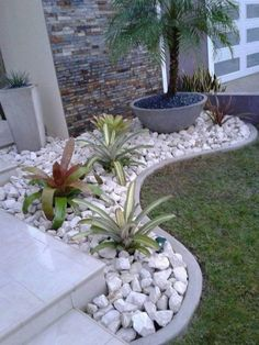Diy Gardening, Vegetable Gardening, Container Gardening, Gardening Gloves, Organic Gardening, Allotment Gardening, Succulent Containers, Greenhouse Gardening, Container Flowers
