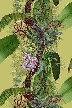 Timorous Beasties / Topical Tropical superwide wallpaper