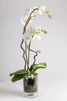 Bestill blomster - Si det med blomster fra Interflora