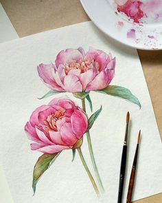 Discover recipes, home ideas, style inspiration and other ideas to try. Peony Drawing, Peony Painting, Watercolour Painting, Watercolors, Fabric Painting, Art Floral, Watercolor Cards, Watercolor Flowers, Peonies Wallpaper