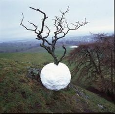 """Hawthorn Tree Snowball,"" 2001, by Andy Goldsworthy"