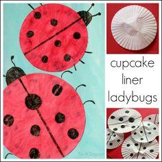 Cupcake liner ladybug craft
