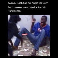 """Ausländer """"ich hab nur Angst vor Gott Auch Ausländer sie draußen ein Hund sehen: - Keke Angst, Memes, Make Me Smile, Balcony, Pet Dogs, God, Meme"""