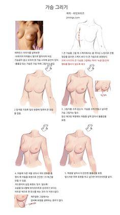 이미지 Breast how to draw boii Figure Drawing Reference, Body Reference, Anatomy Reference, Human Drawing, Body Drawing, Female Drawing, Digital Painting Tutorials, Digital Art Tutorial, Drawing Skills