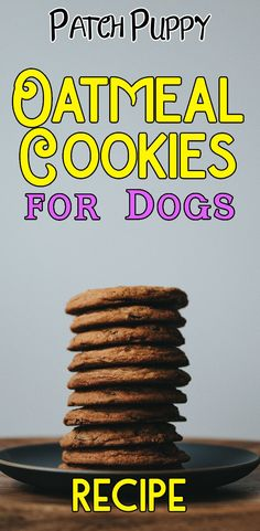 Sometimes it's fun to make a healthy, homemade dog treat for your dog insetead of buying treats. Here are 16 healthy dog treat recipes you can make at home. Puppy Treats, Diy Dog Treats, Healthy Dog Treats, Healthy Snacks, Healthy Pets, Dog Biscuit Recipes, Dog Treat Recipes, Dog Food Recipes, Homemade Dog Cookies