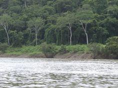 Río Uzumacinta chiapas