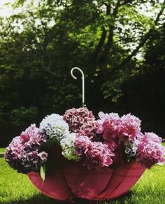 Wendy Lee Maynard ~ Very Pretty. Outdoor Pots, Outdoor Gardens, Garden Crafts, Garden Art, Tall Plants, Potted Plants, Recycled Garden, Lush Garden, Flower Planters